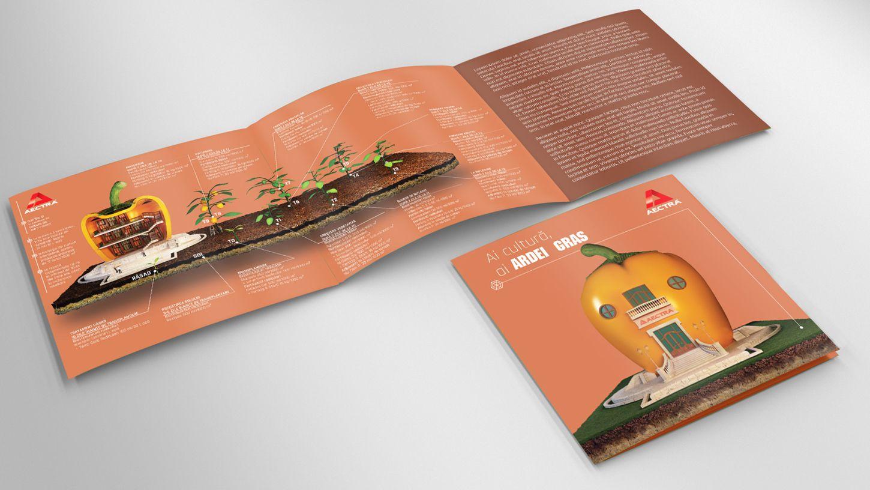 pliante-culturi-ardei-gras-concept-grafica-modelare-3d-rebranding-design-agentie-publicitate-multimedia-print-01-3dartstudio